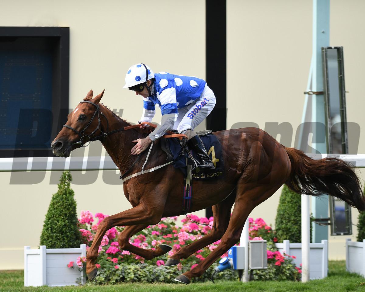 Oriental Fox, Joe Fanning up win the Queen Alexandra Stakes, Royal Ascot, Ascot, UK, 6/24/17, photo by Mathea Kelley