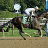Good Samaritan wins the 2017 Jim Dandy<br /> Coglianese Photos/Susie Raisher