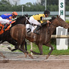 Fire for Effect - Maiden Win, Gulfstream Park, January 7, 2017<br /> Coglianese Photos