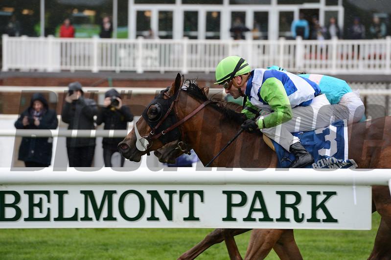 Hawksmoor wins the 2017 Beaugay Stakes<br /> Coglianese Photos/Joe Labozzetta
