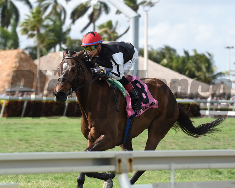 Celestine wins the 2017 Sand Springs Stakes<br /> Coglianese Photos/Lauren King