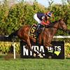 Raucous wins the 2017 Chelsey Flower Stakes<br /> Coglianese Photos/Viola Jasko