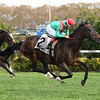 Arles wins the 2017 Long Island Handicap<br /> Coglianese Photos/Viola Jasko