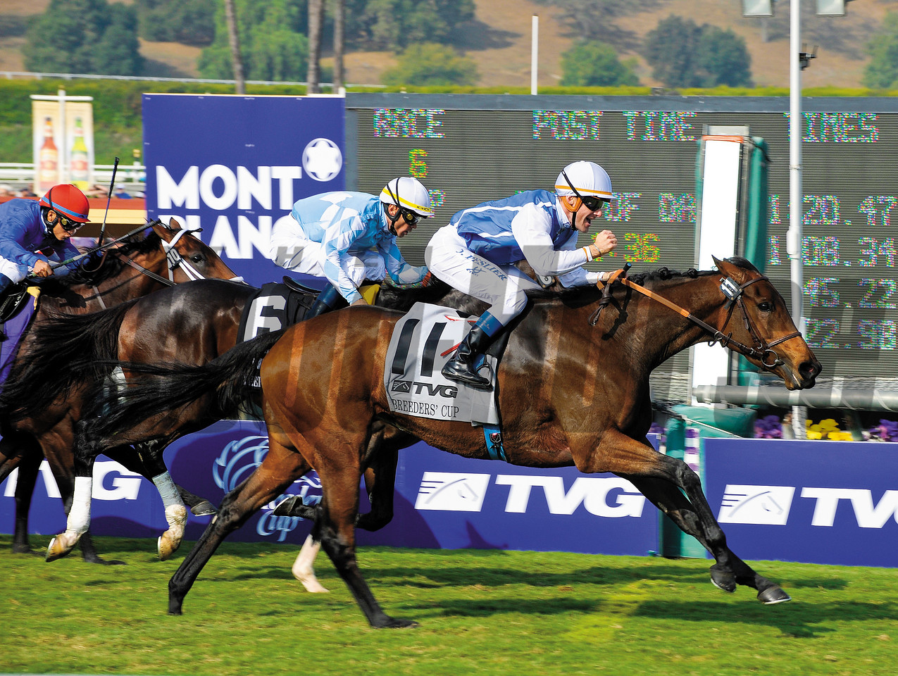 Caption: <br /> Goldikova with Olivier Peslier wins the Breeders' Cup Mile.<br /> Breeders' Cup Saturda at Oak Tree/Santa Anita on Nov. 7, 2009, in Pasadena, California.<br /> Origs2 image<br /> PHoto by Anne M. Eberhardt