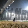 Dubai World Cup -Morning works 3/22/17, photo by Mathea Kelley/Dubai Racing Club<br /> Meydan Scenic