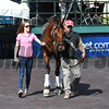 Keen Ice - Gulfstream Park - January 26, 2017<br /> Coglianese Photos/Leslie Martin