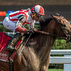 Practical Joke with jockey Joel Rosario wins the 33rd running of The H. Allen Jerkens at the Saratoga Race Course in Saratoga Springs, N.Y.  (Skip Dickstein