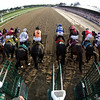 Travers Stakes Starting Gate Remote
