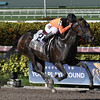 Imperial Hint wins the 2017 Smile Sprint<br /> Coglianese Photos