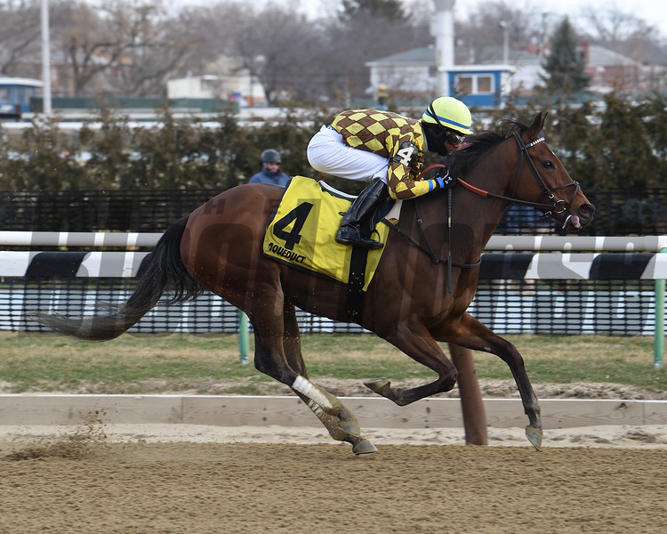 Isabelle wins the 2017 Heavenly Prize Stakes<br /> Coglianese Photos/Robert Mauhar