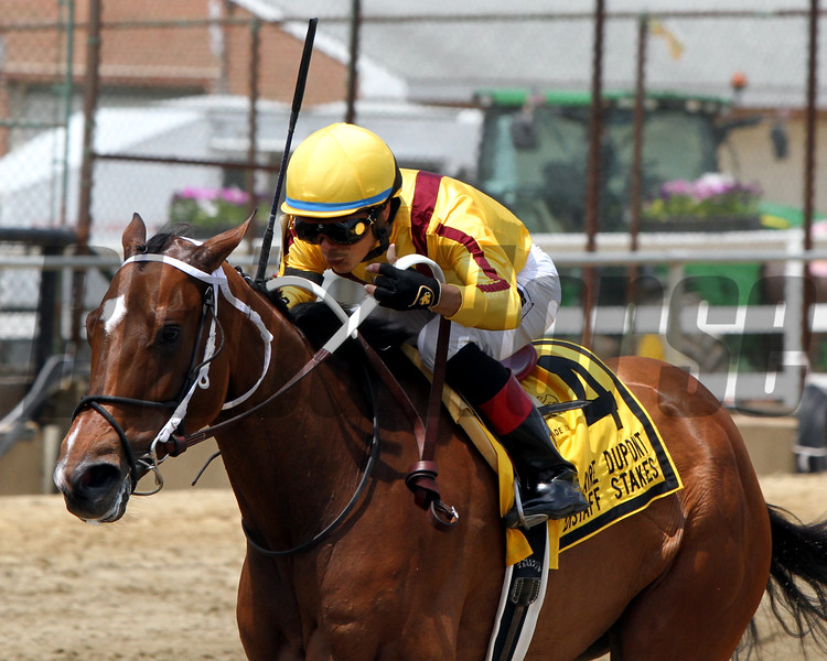 Terra Promessa Jose Ortiz Allaire DuPont Distaff Stakes Chad B. Harmon