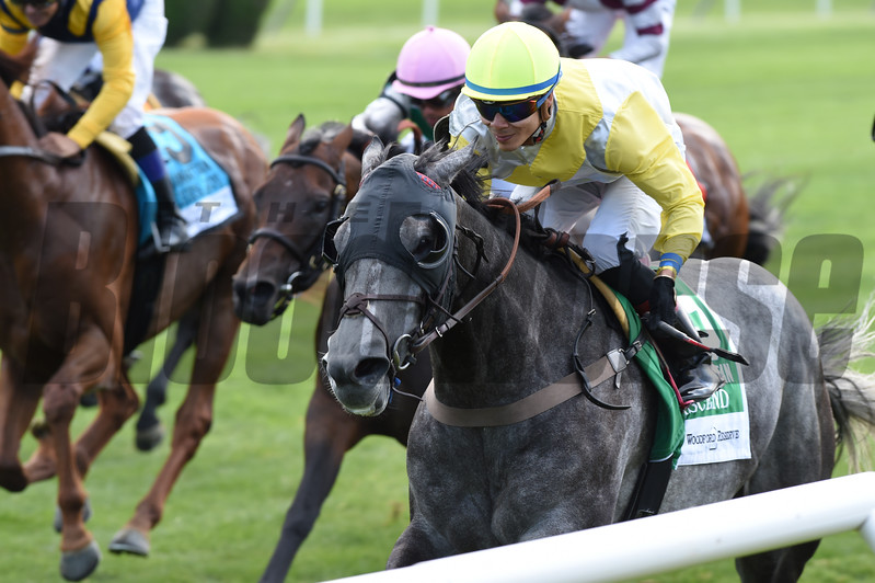Ascend wins the 2017 Woodford Reserve Manhattan Stakes<br /> Coglianese Photos/Adam Mooshian