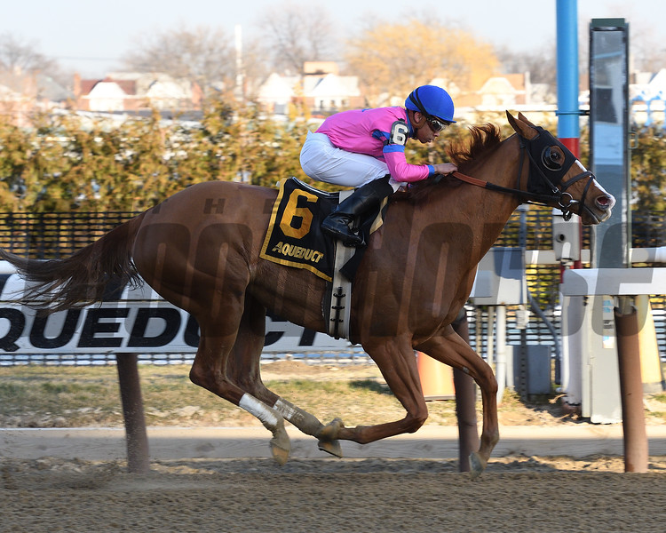 Hot City Girl wins the 2017 Broadway Stakes<br /> Coglianese Photos/Annette Jasko