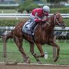 Gun Runner with jockey Florent Geroux aboard clearly outdistanced the field to win the 64th running of The Woodward presented by NYRA Bets Saturday Sept. 1, 2017 at the Saratoga Race Course in Saratoga Springs, N.Y. (Skip Dickstein/