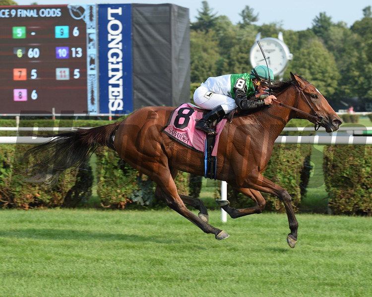 Proctor's Ledge wins the 2017 Lake George<br /> Coglianese Photos