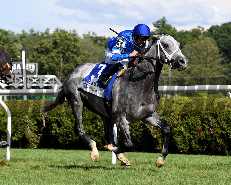 Zennor wins the 2017 Fasig-Tipton Lure Stakes<br /> Coglianese Photos/Viola Jasko