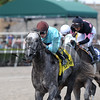 Bird Song wins the Fred W. Hooper Stakes (G3) at Gulfstream Park on March 4, 2017