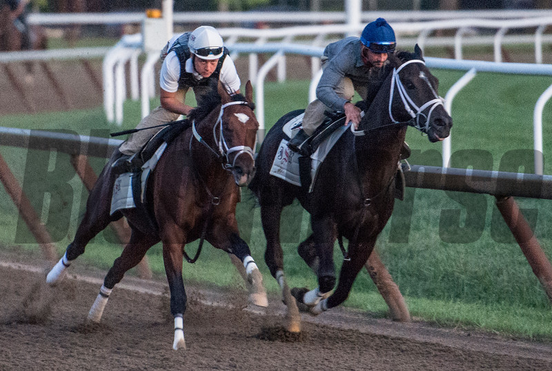 Girvin with regular jockey Robby Alvarado, right puts in his final tune up before dawn on the Oklahoma Training Track for next Saturday's Travers Stakes as he works in tandem with trainer Joe Sharpe on Line Judge Saturday Sug. 19, 2017.  Photo by Skip Dickstein