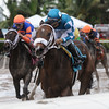 Take Charge Paula; $75,000, House Party Stakes; Gulfstream Park; December 9 2017
