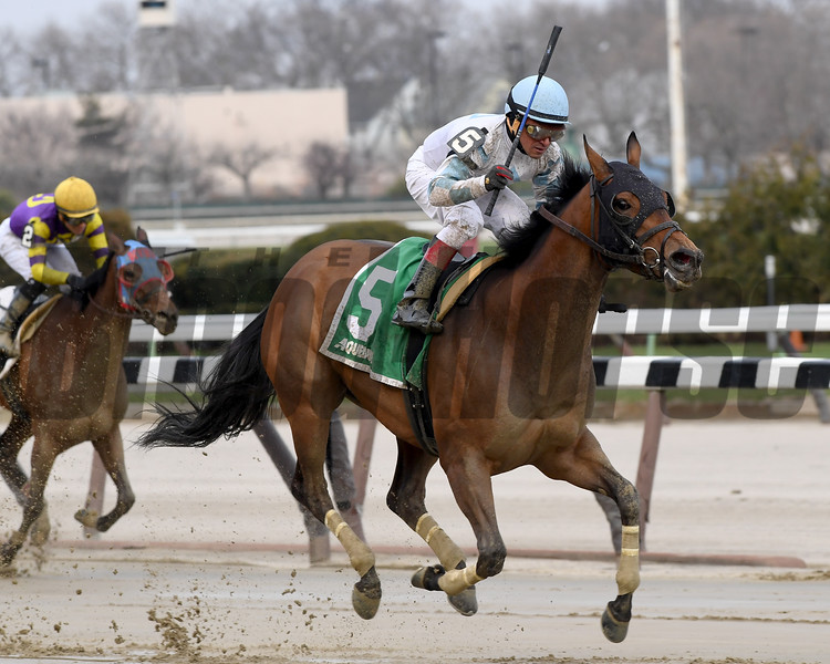 Picture Day wins the 2017 Videogenic Stakes<br /> Coglianese Photos/Robert Mauhar