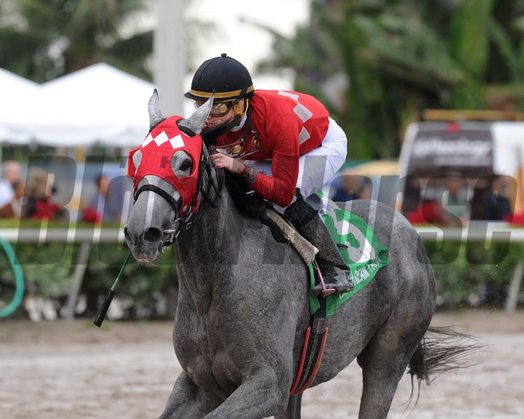 Jaguaryu wins the 2017 Copa Dama del Caribe<br /> Coglianese Photos/Kenny Martin