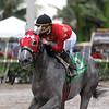 Jaguaryu wins the 2017 Copa Dama del Caribe<br /> Coglianese Photos/Kenny Martin