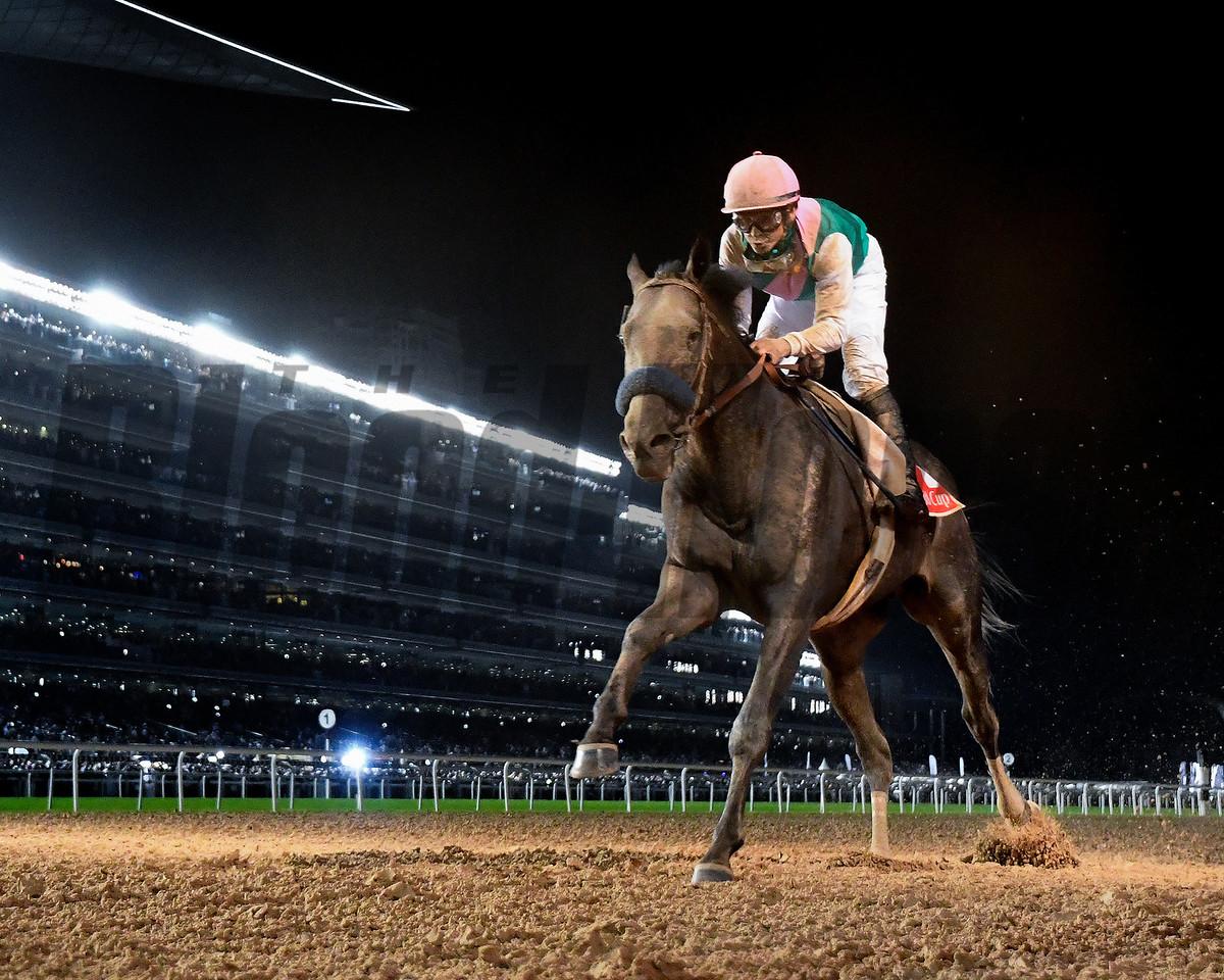 Dubai World Cup  3/25/17, photo by Mathea Kelley/Dubai Racing Club<br /> Arrogate and Mike Smith win the Dubai World Cup