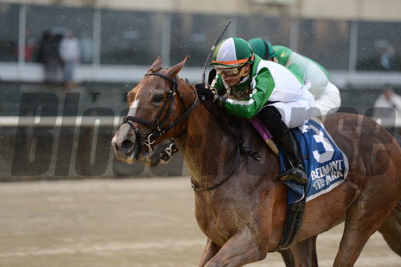 Highway Star wins the 2017 Ruffian Stakes<br /> Coglianese Photos/Joe Labozzetta
