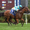 Lady Eli wins the 2017 Diana Stakes<br /> Coglianese Photos