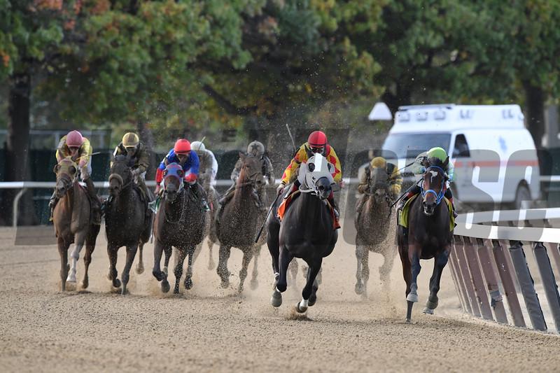 Verdant Pastures wins the 2017 Empire Distaff Handicap<br /> Coglianese Photos/Robert Mauhar