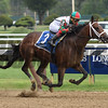 Firenze Fire wins the 2017 Sanford Stakes<br /> Coglianese Photos