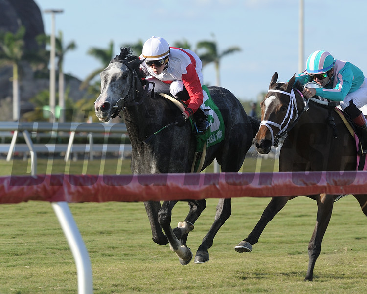 On Leave wins the 2017 My Charmer<br /> Coglianese Photos/Kenny Martin