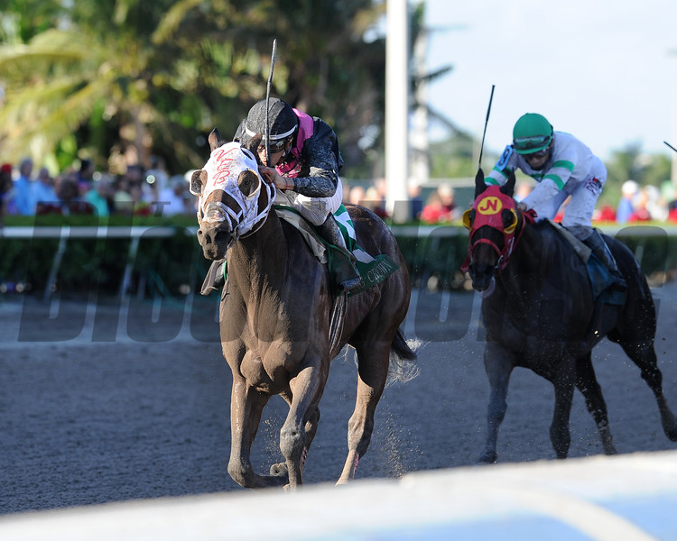 Cautious Giant wins the 2017 Claiming Crown Rapid Transit<br /> Coglianese Photos/Kenny Martin