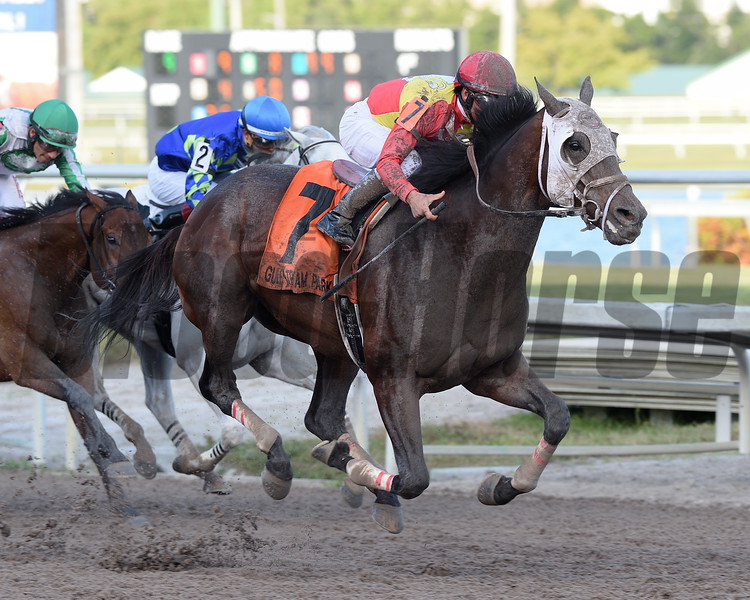 Fear the Cowboy wins the 2017 Harlan's Holiday Stakes<br /> Coglianese PhotosLauren King