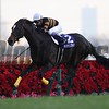 Kitasan Black wins the 2017 Arima Kinen<br /> Masakazu Takahashi Photo