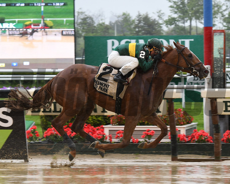 Timeline wins the 2017 Peter Pan Stakes<br /> Coglianese Photos/Annette Jasko