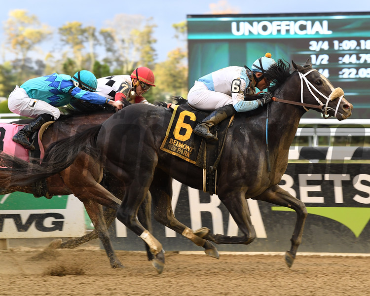 Tom's Ready wins the 2017 Bold Ruler<br /> Coglianese Photos/Viola Jasko