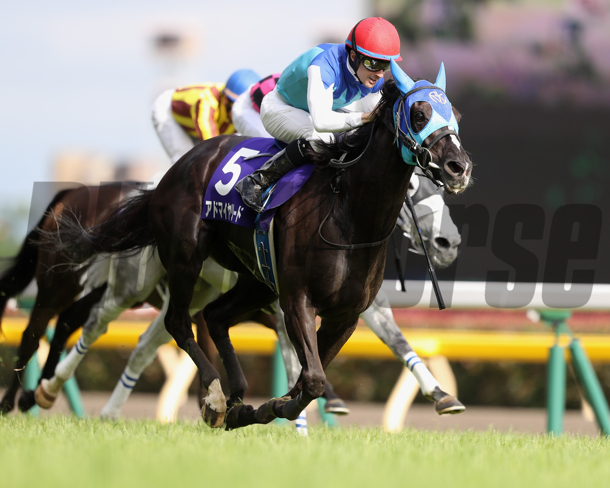 Admire Lead wins the Victoria Mile (G1) at Tokyo Racecourse on May 14 2017
