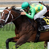 Arklow American Turf Churchill Downs Chad B. Harmon