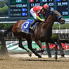 Abel Tasman wins the 2017 Acorn<br /> Coglianese Photos