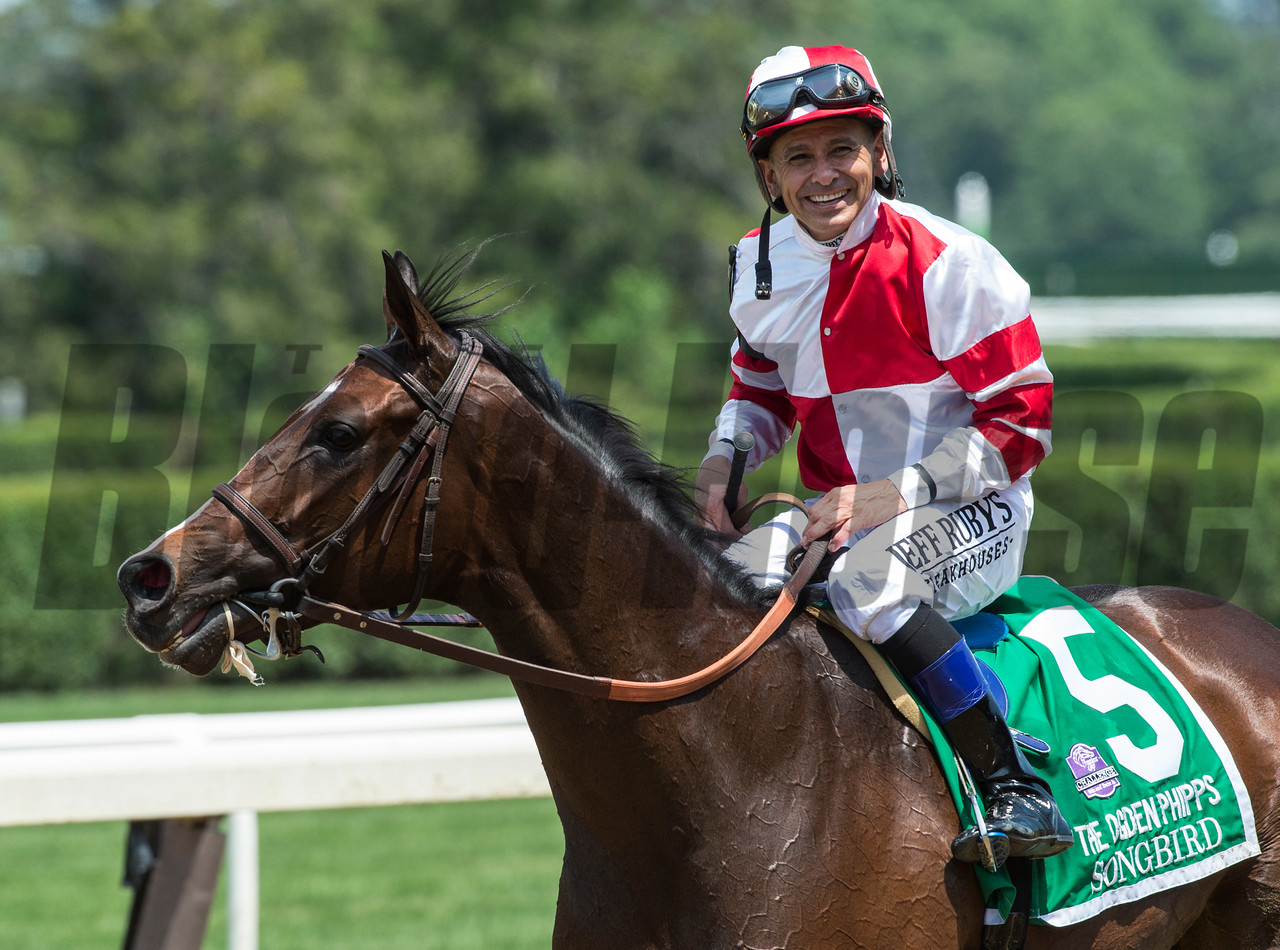 Songbird with jockey Mike Smith aboard wins the 49th running of The Ogden Phipps over Paid Up Subscriber with Javier Castellano up at Belmont Park June 10, 2017 in Elmont, N.Y.  Photo by Skip Dickstein