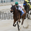 Do Share wins the 2017 Stud Muffin Stakes<br /> Coglianese Photos/Annette Jasko