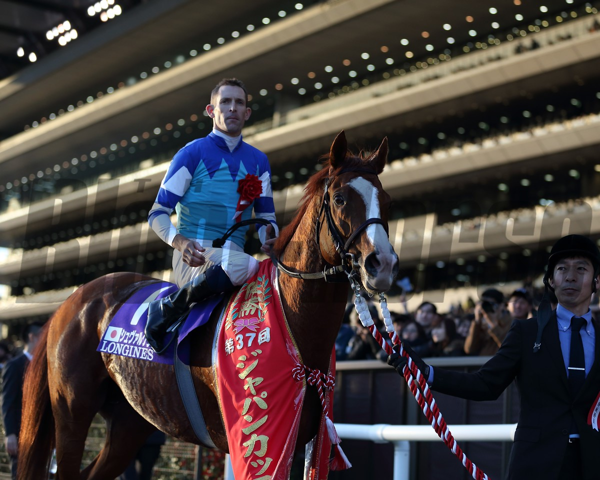 Cheval Grand, Hugh Bowman, Japan Cup, G1, Tokyo Racecourse, November 26 2017