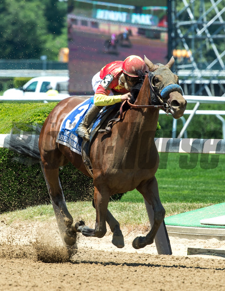 Mike Smith guides Abel Tasman to the win in the 87th running of The Acorn at Belmont Park June10, 2017 in Elmont, N.Y.  Photo by Skip Dickstein