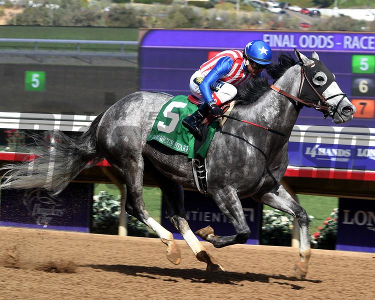 Americanize, Rafael Bejarano, Damascus Stakes, Del Mar Racecourse, November 3 2017