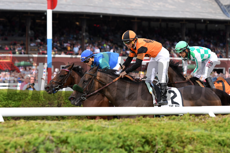 Estrechada wins the 2017 Fasig-Tipton Waya Stakes<br /> Coglianese Photos/Annette Jasko