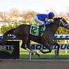 Exulting wins the 2018 Artie Schiller Stakes<br /> Coglianese Photos/Chelsea Durand