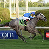 Uncle B wins the 2018 Claiming Crown Emerald at Gulfstream Park<br /> Coglianese Photos/Leslie Martin