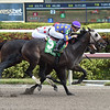 Garter and Tie wins the 2018 Smooth Air Stakes<br /> Coglianese Photos/Leslie Martin