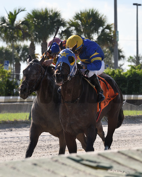 Jackson wins the 2018 Juvenile Sprint Stakes at Gulfstream Park West<br /> Coglianese Photos/Lauren King